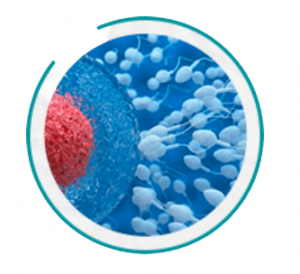 Urotrin - kā lietot - sastāvs - lietošana